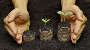 Social impact investing and consulting